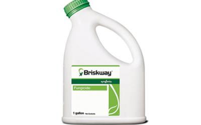 Briskway